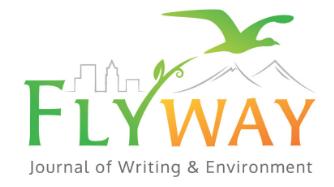 flyway logo