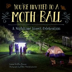 Moth Ball Cover